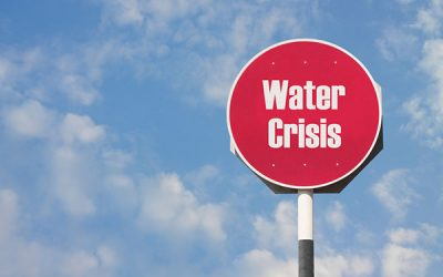 Cape Businesses facing water crisis
